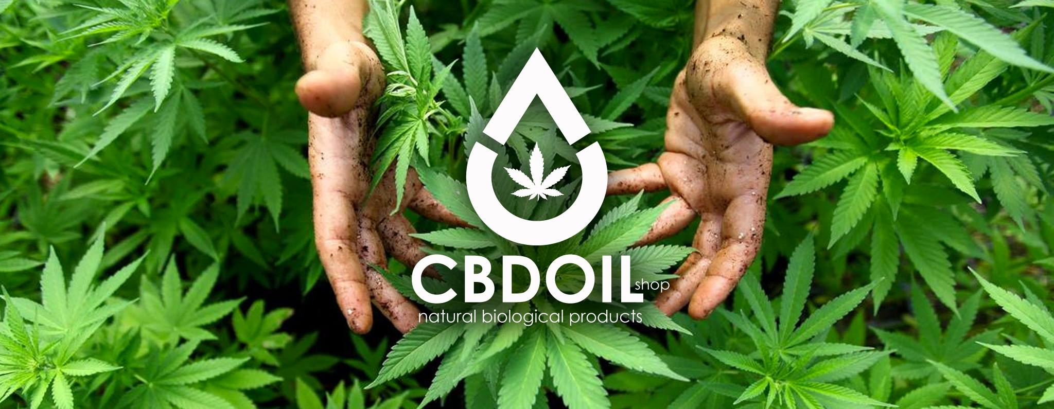 cbd oil shop.products